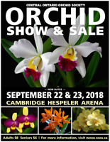 33rd Annual COOS Orchid Show & Sale