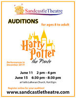 Auditions for Harry Potter: the Panto (Saugeen Shores June 11)