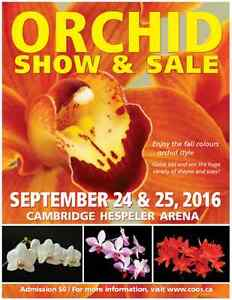 31st Annual Orchid Show & Sale Cambridge Kitchener Area image 1
