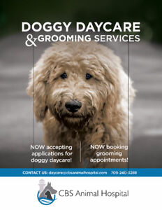 Grooming Services CBS