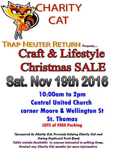 Craft and Lifestyle Sale in support of Charity Cat TNR