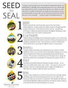 Young Living Essential Oils London Ontario image 6