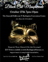 Black Cat Masquerade Gala