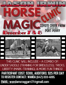 Horse Magic - Training Clinic !!!