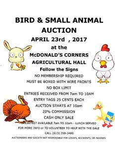 Bird & Small Animal Auction - chickens, geese, ducks,rabbits