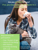 Participants needed for Cat Allergy study