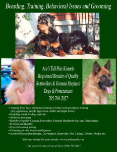 Boarding, Training, Behavioral Issues and Grooming, Muskoka