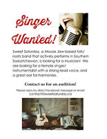 Singer/musician wanted