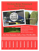 Tree & Hedge Service ~ FREE Estimates ~ New Spring Specials