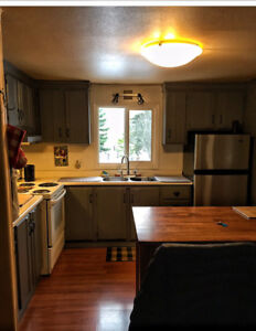 Skiers, family visiting. 2 bedroom apartment for daily or weekly