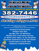Snow Removal in Dieppe area