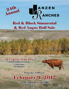 Janzen Ranches Red & Black Simmental & Red Angus Bull Sale