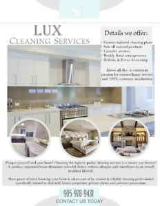 Cleaning service / house cleaner / residential cleaning / maid