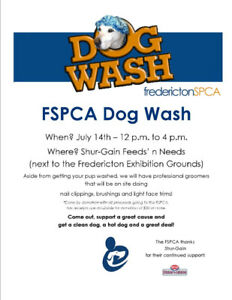 Dog wash find or advertise pet animal services in canada fspca dog wash bbq solutioingenieria Choice Image