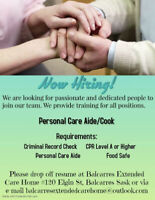 Personal Care Aide/Cook