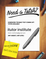 Tutor Available - Cheapest price, all levels (IB/AP/Applied,etc)