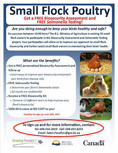 Small Flock Poultry Project - Free assessments and testing!