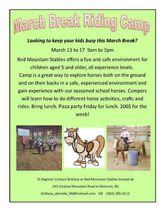 March break horse camp