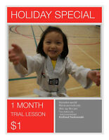 Welland Taekwondo Holiday Special