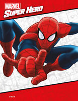 Come Meet SPIDERMAN! - direct from Marvel Studios.