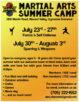 Valley Martial Arts Summer Day Camp