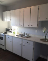 ~Newly Updated and Renovated 1 bedroom apartment~ Avail Now
