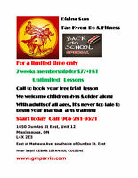TAE KWON DO LESSONS RISING SUN BACK TO SCHOOL SPECIAL