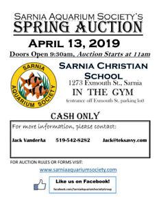 Fish Auction April 13th