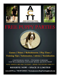 FREE PUPPIES & PIZZA PARTY