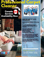 5 Star Carpet And Upholstery Cleaning Service