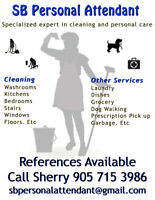 Residential Cleaning and Personal Attendant