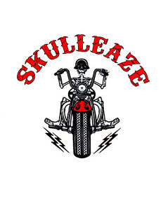 SKULL ACCESSORIES - HARLEY DAVIDSON
