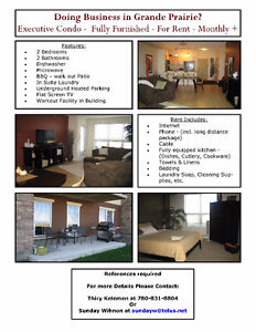 Available July 1 - Fully furnished executive condo