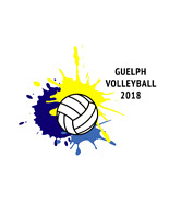 Sunday Volleyball League (Guelph)