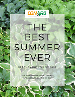 The Best Summer Ever: we help you with your yard!