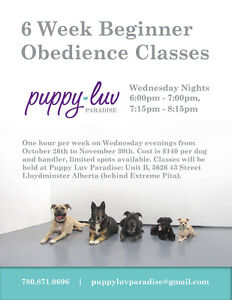 Beginner Dog Obedience Classes Starting Wednesday October 26th