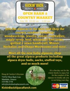 Open Barn and Country Market with the Alpacas
