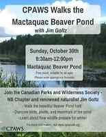CPAWS Walks the Mactaquac Beaver Pond - with Jim Goltz