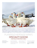 Special on our Christmas/ New Year's Goose for Table