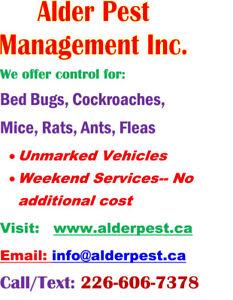 Pest control services- St.Catharines, Niagara Falls area