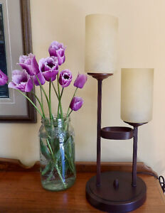 Gorgeous Nearly New Lamp - Rubbed Bronze Finish Metal