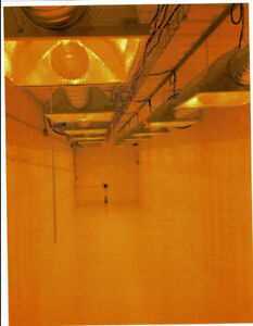 VBC 40' Marijuana Grow Room