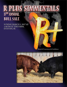 R Plus Simmentals Bull Sale - March 5, 2017 - Estevan, SK