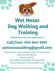 Wet Noses Dog Walking and Training