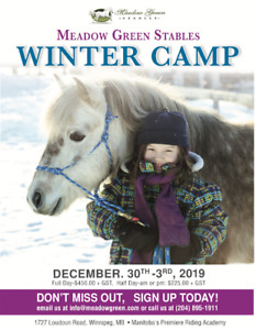 Winter Camp At Meadow Green Stables