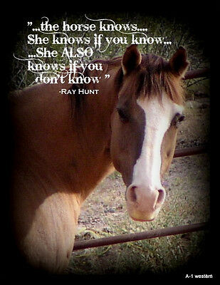 """Ray Hunt  horse  quote  refrigerator magnet 3 1/2""""X 4   1/2 """""""