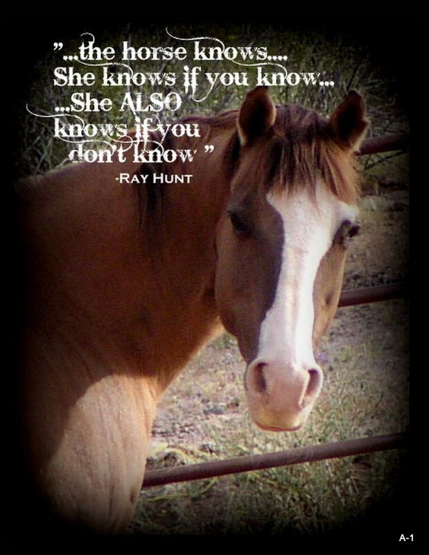 """Ray Hunt Quote Horse  refrigerator magnet 3 1/2 X 4 3/4 """""""
