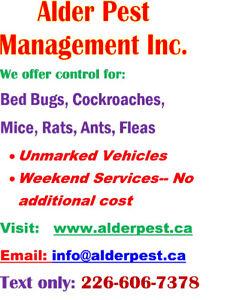 Pest Control Services St.Catharines/Niagarafalls