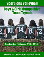 Scorpions Youth Volleyball Fall and Winter Programs