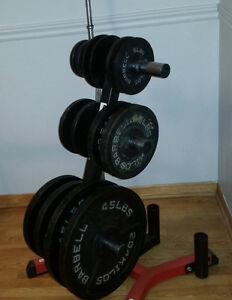 Bench, Weights, Tree & Oly Bar